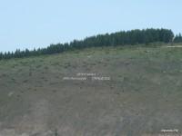 Нижний Иргинск 2009 (5/21)