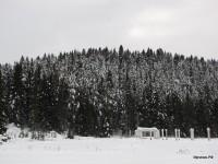 Нижний Иргинск 2011 (14/20)
